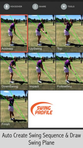 Swing Profile Image 2