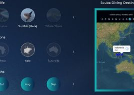Scuba Calendar iPhone Review